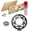 Sprockets & Chain Kit DID 520ERV3 MotoGP Gold APRILIA RSV4 1100 RR Conversion 520 Ultralight 16-18