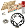 Sprockets & Chain Kit DID 520ERV3 MotoGP Gold APRILIA Tuono 1000 R Racing Conversion 520 Ultralight 04-09